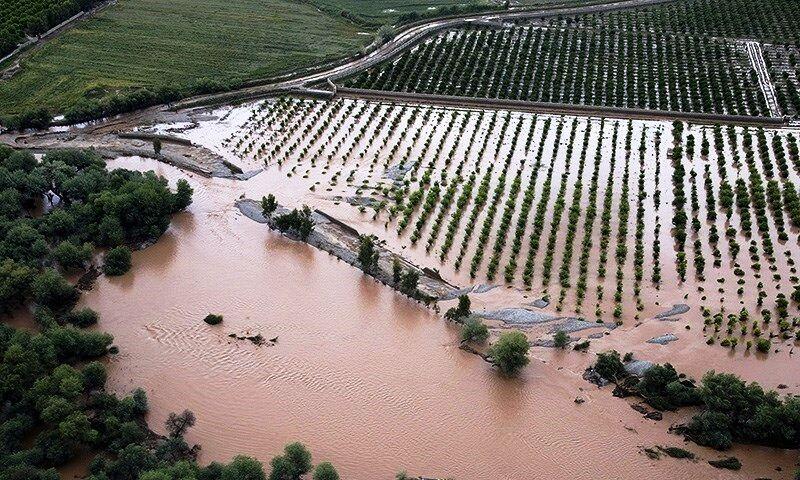 پرداخت ۱۱۱ میلیارد تومان برای کشاورزان سیلزده