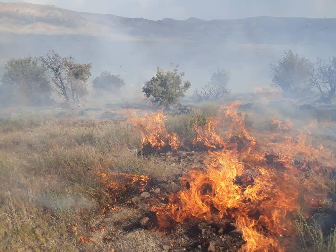 عاملان آتشسوزی مراتع کوهدشت دستگیر شدند