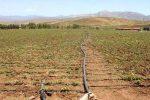 اراضی کشاورزی چشم انتظار آب/ وزارت نیرو به تعهدات خود عمل نکرد
