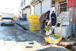 مردم از خرید مرغ زنده پرهیز کنند