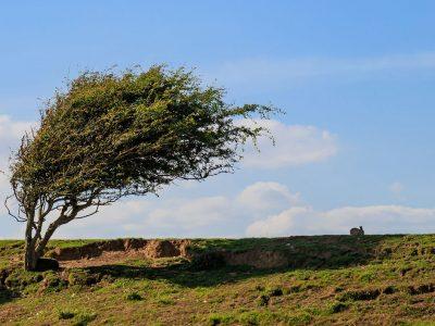 سرعت باد دیروز ؛ ۱۰۴ کیلومتر