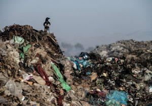 زباله ها شهرداران لرستان را قضایی کردند.