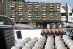 نصب «جی پی اس» روی خودروهای حمل مرغ زنده در لرستان