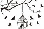 آزادی ۱۰ زندانی جرائم غیرعمد لرستانی همزمان با دهه کرامت